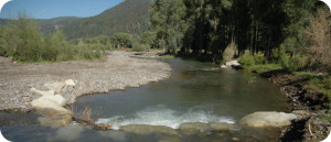 East-Fork-of-San-Juan-River-near-Pagosa-Springs-CO-EFR-AFTER-1