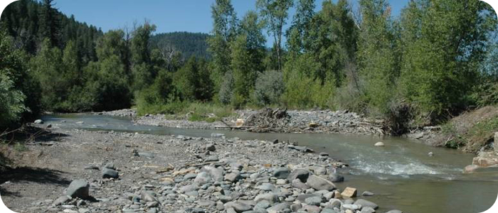 Lower-Blanco-River-near-Pagosa-Springs-CO-LBPOA-1