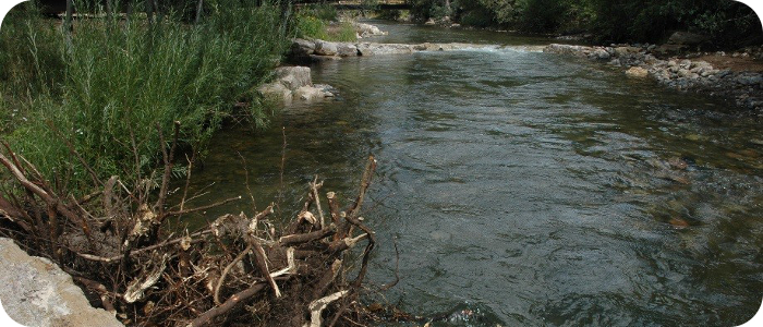 Pecos-River-near-Pecos-NM-Kooi-2