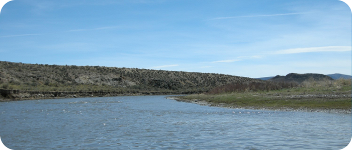 Rio-Grande-below-Alamosa-CO-Reach-2_1
