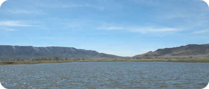Rio-Grande-below-Alamosa-CO-Reach-2_2