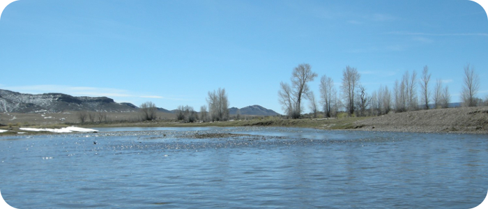 Rio-Grande-below-Alamosa-CO-Reach-2_3