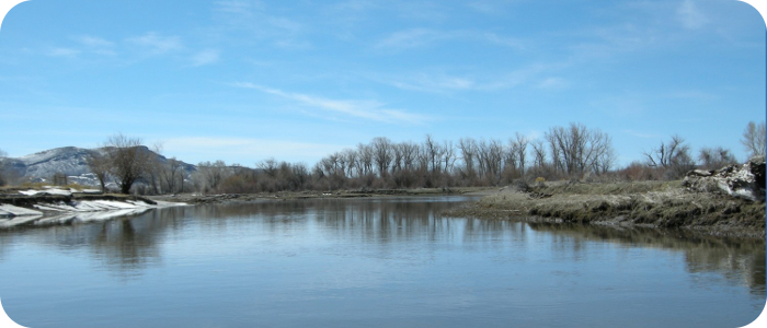 Rio-Grande-below-Alamosa-CO-Reach-2_5