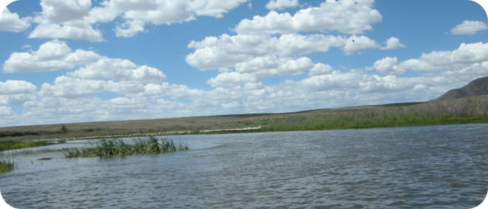 Rio-Grande-below-Alamosa-CO-Reach-3_3