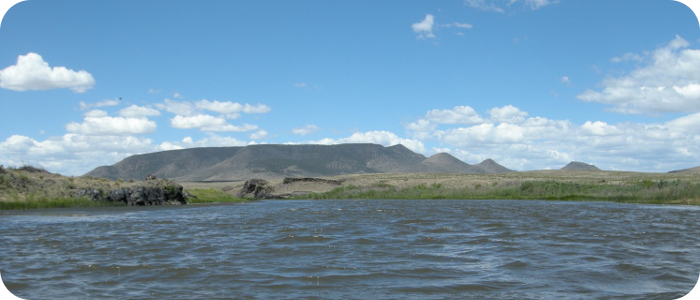 Rio-Grande-below-Alamosa-CO-Reach-3_4