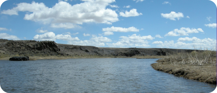 Rio-Grande-below-Alamosa-CO-Reach-3_6