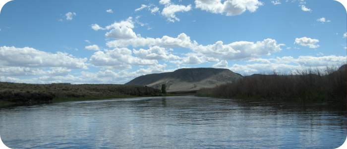 Rio-Grande-below-Alamosa-CO-Reach-5_4
