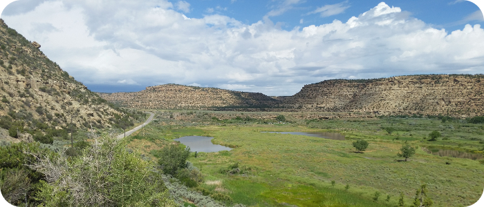 Munoz Flats - July 2015