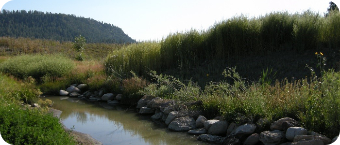 Stollsteimer-Creek-in-Ignacio-CO