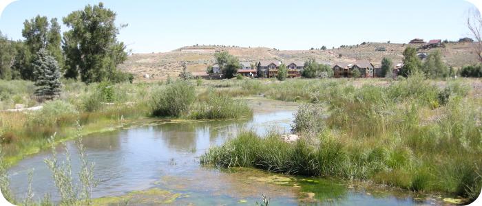 After - Wetland