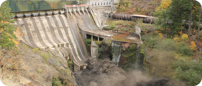 Dams & Fish Barriers